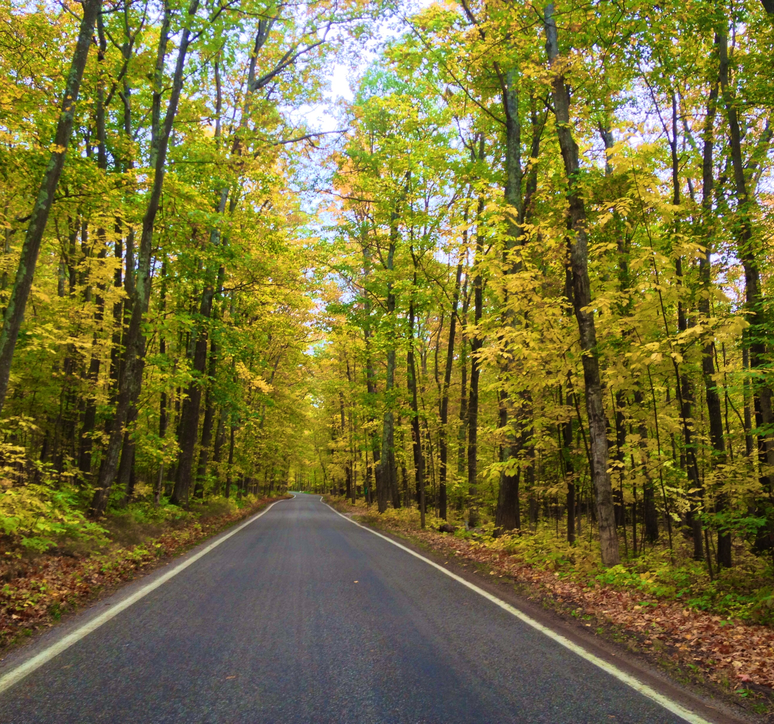 fall color tours in northern michigan stafford s