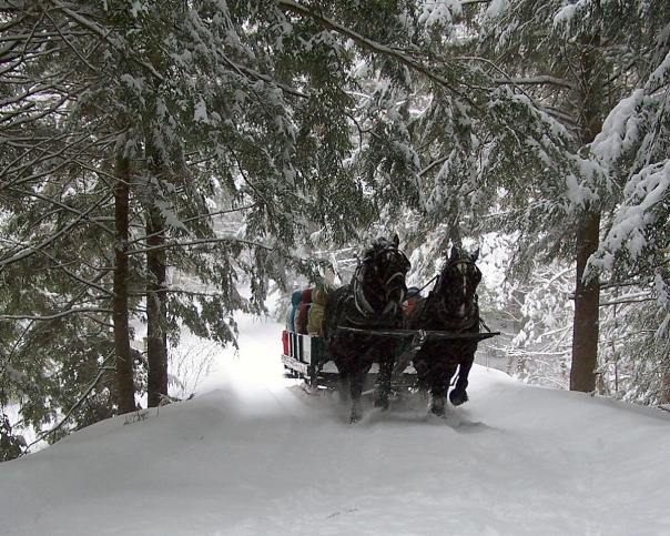 Bundle Up For A Sleigh Ride!
