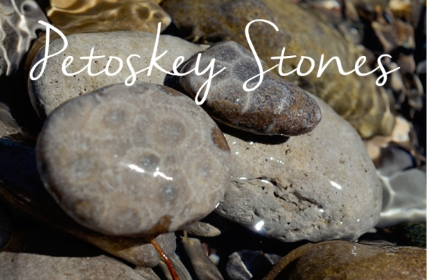 Petoskey Stones with text