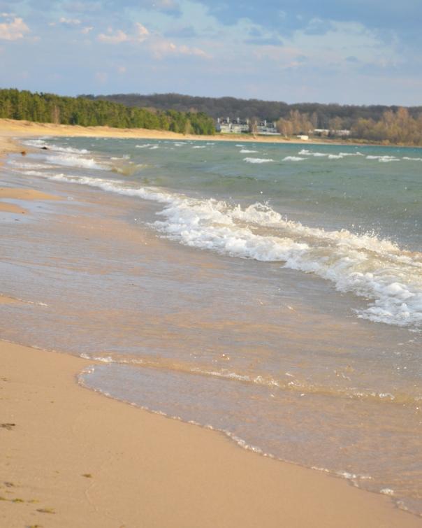 (61) State Park Beach