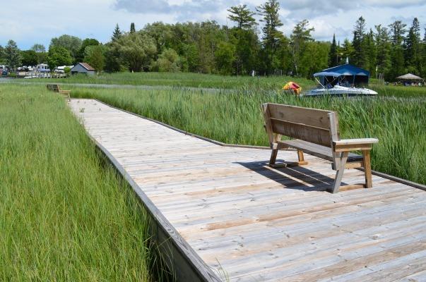 sanctuary island boardwalk 2